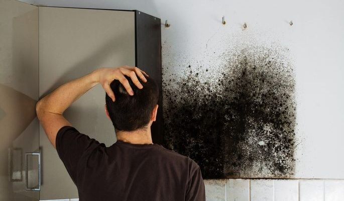 Is Mold in Your Home